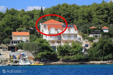 Property Lumbarda (Korčula) - Accommodation 10049 - Apartments near sea.