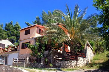 Property Gradina (Korčula) - Accommodation 10067 - Apartments in Croatia.