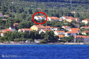 Property Orebić (Pelješac) - Accommodation 10098 - Apartments with pebble beach.
