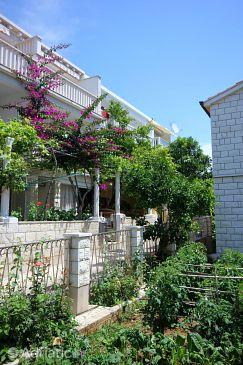 Property Orebić (Pelješac) - Accommodation 10190 - Apartments near sea with pebble beach.