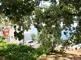 Balcony - view - Apartment A-1055-b - Apartments Živogošće - Porat (Makarska) - 1055