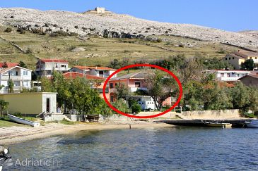 Property Dinjiška (Pag) - Accommodation 11061 - Apartments near sea with pebble beach.