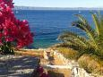 Courtyard Uvala Stiniva (Korčula) - Accommodation 11389 - Vacation Rentals near sea.