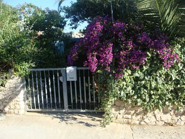 Property Sevid (Trogir) - Accommodation 11542 - Vacation Rentals near sea.