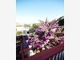 Balcony - view - Apartment A-11578-a - Apartments Sali (Dugi otok) - 11578