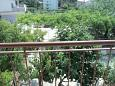 Balcony - view - Room S-11716-b - Rooms Banjol (Rab) - 11716