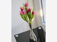 Trogir, Living room u smještaju tipa apartment, dostupna klima i WIFI.