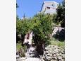 Apartments Zaostrog (Makarska) - 12935