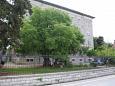 Apartments Zadar (Zadar) - 13291