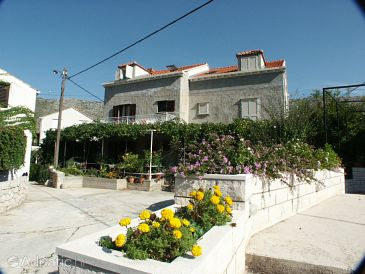 Property Zaton Mali (Dubrovnik) - Accommodation 2123 - Apartments and Rooms near sea with pebble beach.