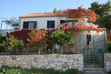 Property Splitska (Brač) - Accommodation 2923 - Apartments near sea.