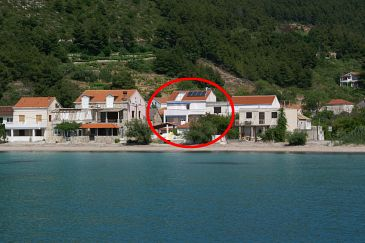 Property Žuljana (Pelješac) - Accommodation 3163 - Rooms near sea with sandy beach.