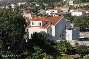 Property Dubrovnik (Dubrovnik) - Accommodation 3177 - Apartments with pebble beach.
