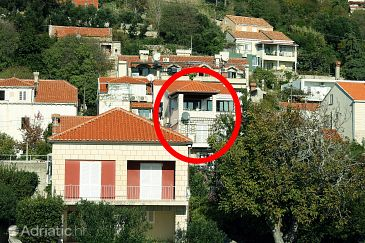 Property Dubrovnik (Dubrovnik) - Accommodation 3178 - Apartments with pebble beach.