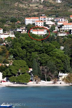 Property Mlini (Dubrovnik) - Accommodation 3182 - Apartments with pebble beach.