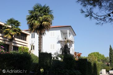 Property Rovinj (Rovinj) - Accommodation 3393 - Apartments with pebble beach.