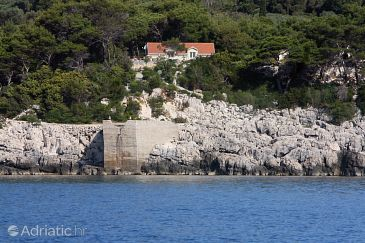 Saplunara, Mljet, Property 401 - Rooms blizu mora.