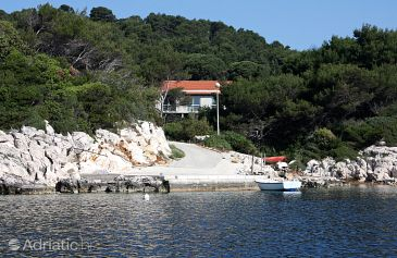 Property Saplunara (Mljet) - Accommodation 402 - Apartments near sea.