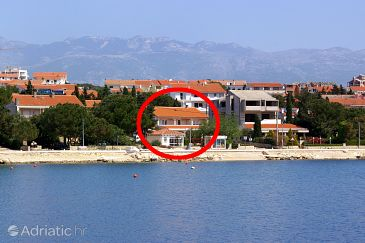 Property Novalja (Pag) - Accommodation 4067 - Apartments and Rooms near sea.