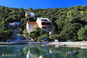 Property Uvala Vrbovica (Korčula) - Accommodation 4390 - Apartments near sea with pebble beach.