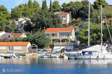 Property Lumbarda (Korčula) - Accommodation 4442 - Apartments and Rooms near sea with pebble beach.