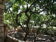 Lumbarda, Terrace - view u smještaju tipa house, WIFI.