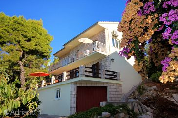 Property Brna (Korčula) - Accommodation 4478 - Apartments near sea.