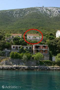 Property Uvala Crkvice (Pelješac) - Accommodation 4505 - Apartments near sea with pebble beach.