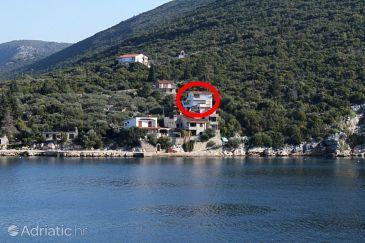 Uvala Pokrivenik, Hvar, Property 4604 - Apartments blizu mora.