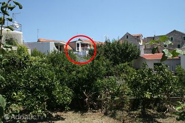 Property Stari Grad (Hvar) - Accommodation 4626 - Apartments near sea with pebble beach.
