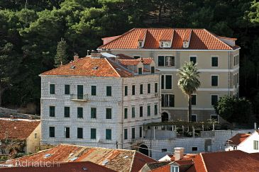 Dubrovnik, Dubrovnik, Property 4742 - Apartments and Rooms blizu mora with pebble beach.