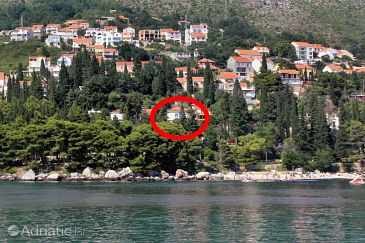 Property Mlini (Dubrovnik) - Accommodation 4757 - Apartments and Rooms near sea with pebble beach.