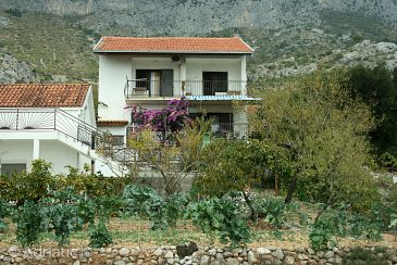 Property Brist (Makarska) - Accommodation 4758 - Apartments near sea with pebble beach.