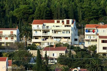 Property Dubrovnik (Dubrovnik) - Accommodation 4785 - Apartments with pebble beach.