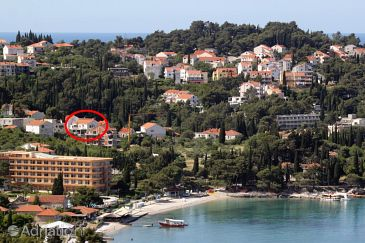 Property Cavtat (Dubrovnik) - Accommodation 4791 - Apartments near sea with pebble beach.