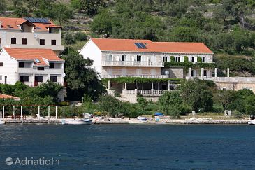Property Soline (Mljet) - Accommodation 4904 - Rooms near sea.