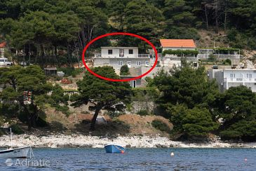 Property Saplunara (Mljet) - Accommodation 4906 - Apartments near sea with sandy beach.