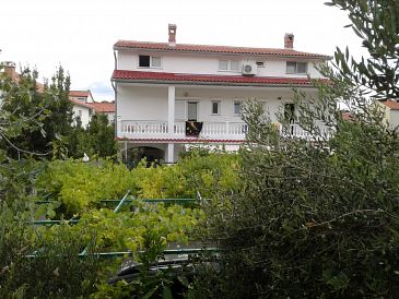 Property Palit (Rab) - Accommodation 4990 - Apartments in Croatia.