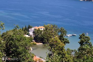 Property Supetarska Draga - Donja (Rab) - Accommodation 5017 - Apartments near sea.