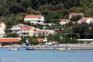 Property Kampor (Rab) - Accommodation 5018 - Apartments in Croatia.