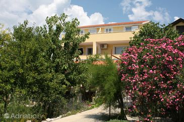 Property Murter (Murter) - Accommodation 5100 - Apartments with pebble beach.