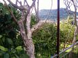 Balkon - widok - Apartament A-5199-b - Apartamenty Poljica (Trogir) - 5199