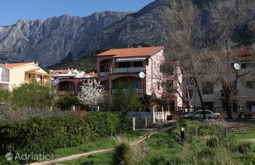 Property Makarska (Makarska) - Accommodation 5264 - Apartments with pebble beach.