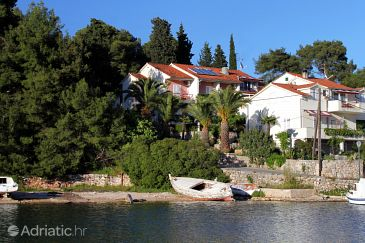 Property Vrboska (Hvar) - Accommodation 540 - Apartments and Rooms near sea with rocky beach.