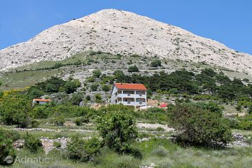 Property Stara Baška (Krk) - Accommodation 5460 - Apartments and Rooms with pebble beach.