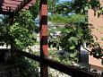 Terrace - view - Apartment A-5461-b - Apartments Krk (Krk) - 5461