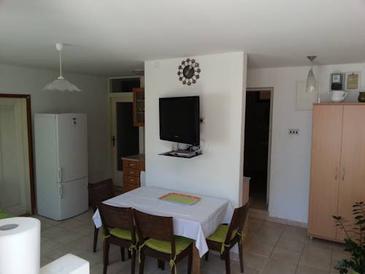Apartament A-5559-b - Apartamenty Senj (Senj) - 5559