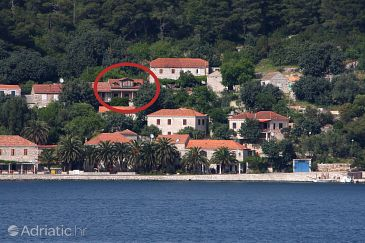 Property Babine Kuće (Mljet) - Accommodation 611 - Apartments near sea with rocky beach.