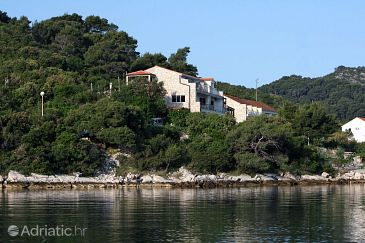 Property Polače (Mljet) - Accommodation 613 - Apartments near sea with pebble beach.