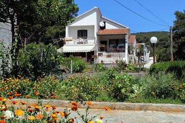 Property Brgulje (Molat) - Accommodation 6242 - Apartments near sea.